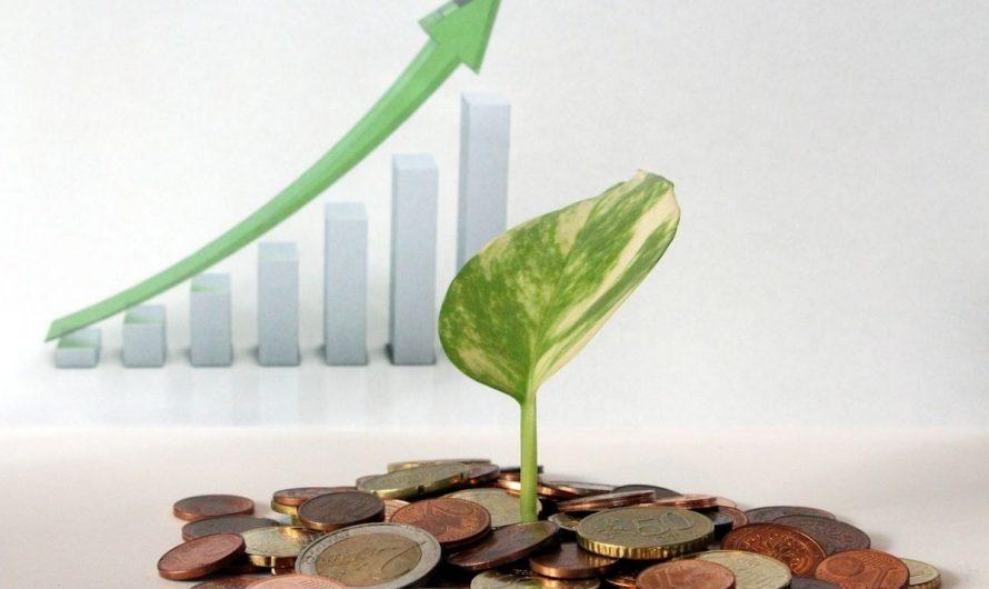 Comment gagner de l'argent avec son assurance-vie