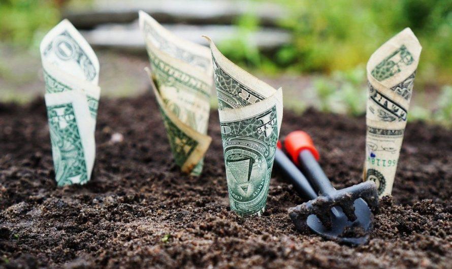 Participation et intéressement : le bon plan de l'épargne salariale