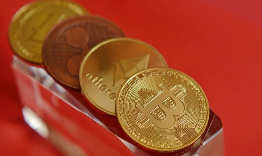 Comment se former aux cryptos avant le prochain halving