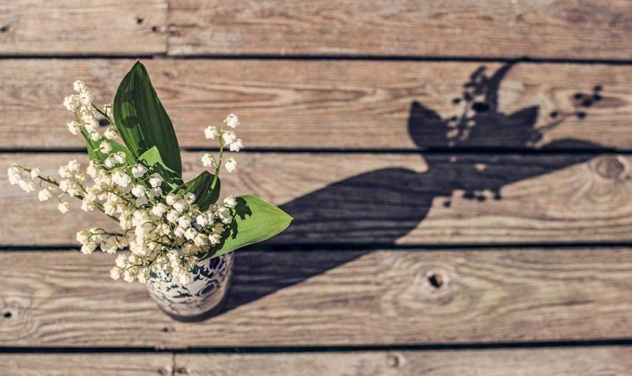 Vendre du muguet le 1er Mai : comment s'y prendre ?
